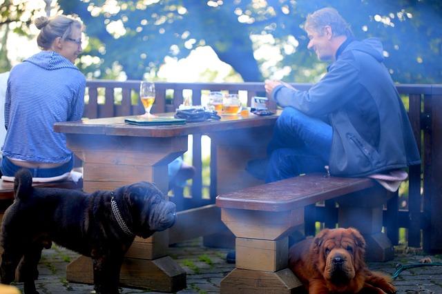 Muž a žena sedia na terase pri stole s dvoma psami.jpg